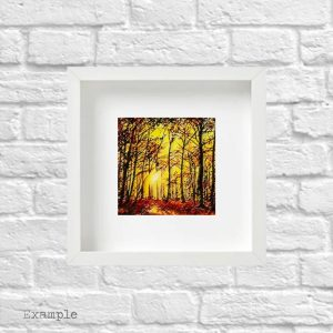 Autumn Walk<br/>Framed Glass