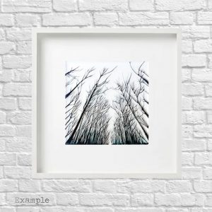 Black Forest<br/>Framed Glass Large