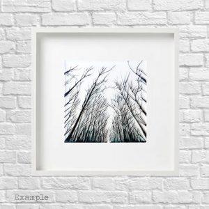 Black Forest<br/>Framed Glass Large