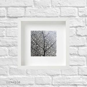 Black Leaf<br/>Framed Glass