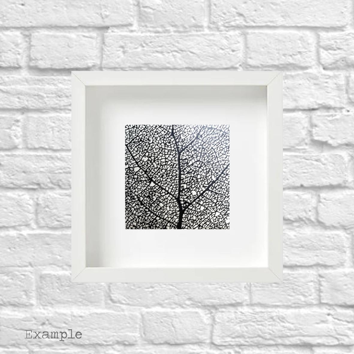 PS-black-leaf-small-white-frame