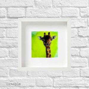 Giraffe<br/>Framed Glass