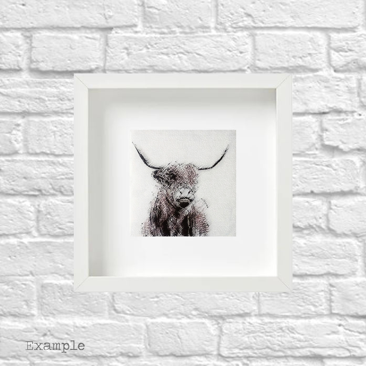 PS-highland-cow-small-white-frame