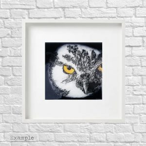 Owl<br/>Framed Glass Large