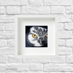 Owl<br/>Framed Glass