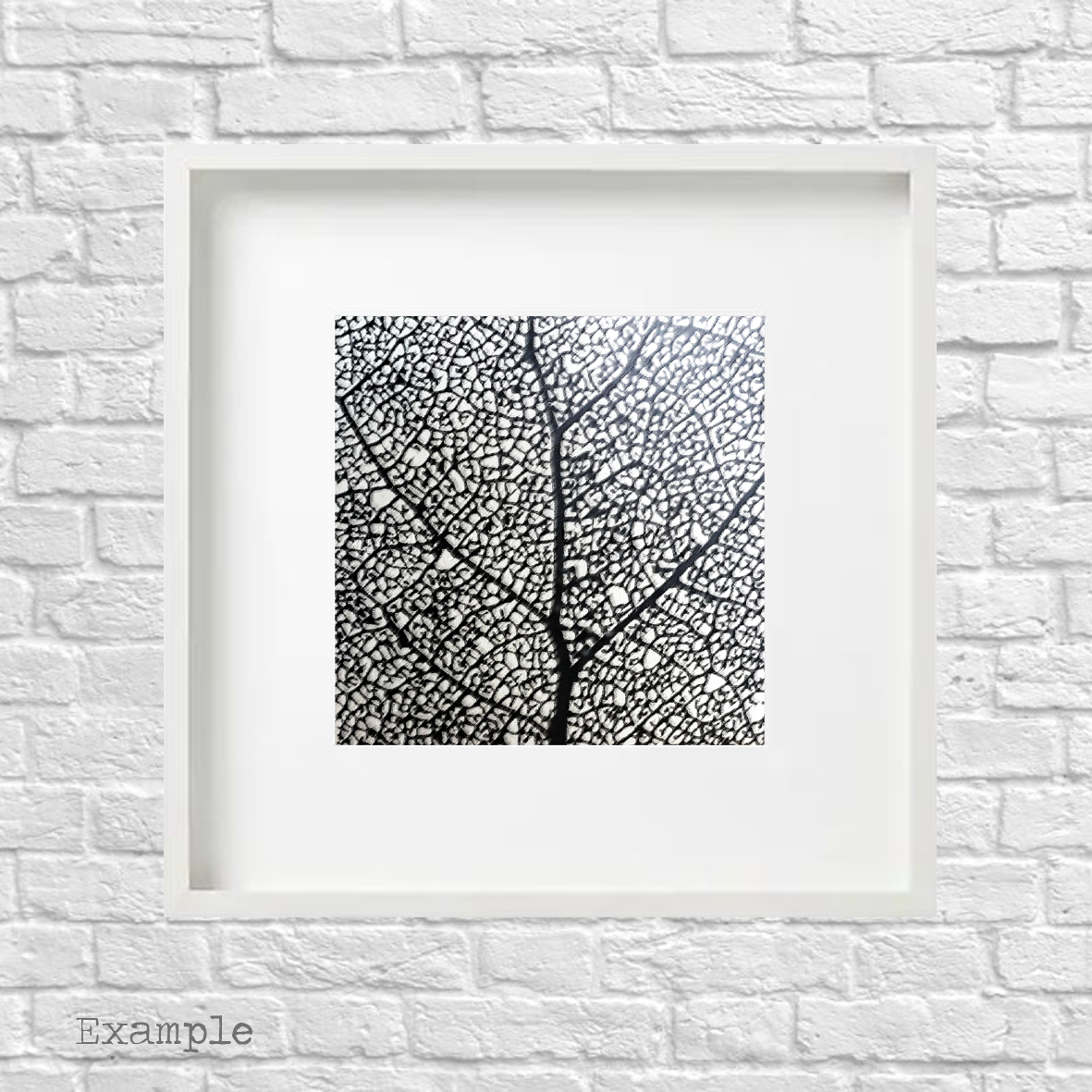 PS-tree-grove-large-white-frame