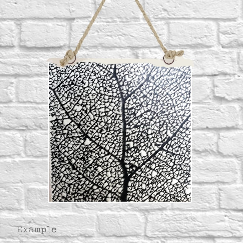 Pre-set-wall-hanging-background-black-leaf