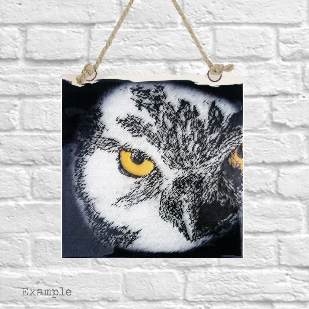 Pre-set-wall-hanging-background-owl