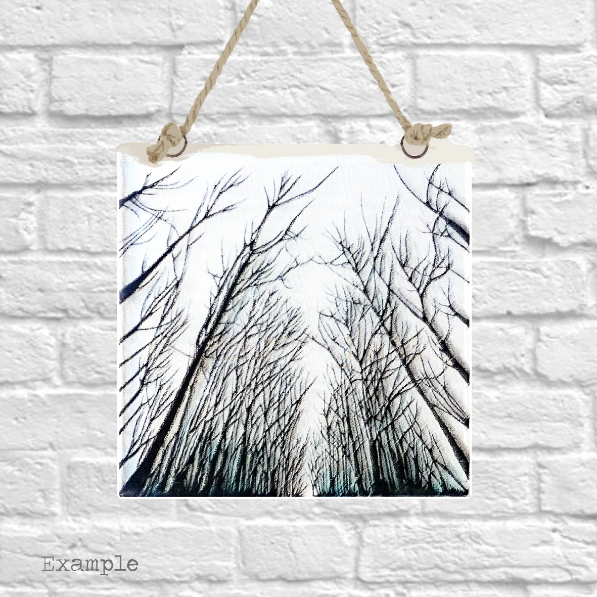 Pre-set-wall-hanging-background-pblack-forest