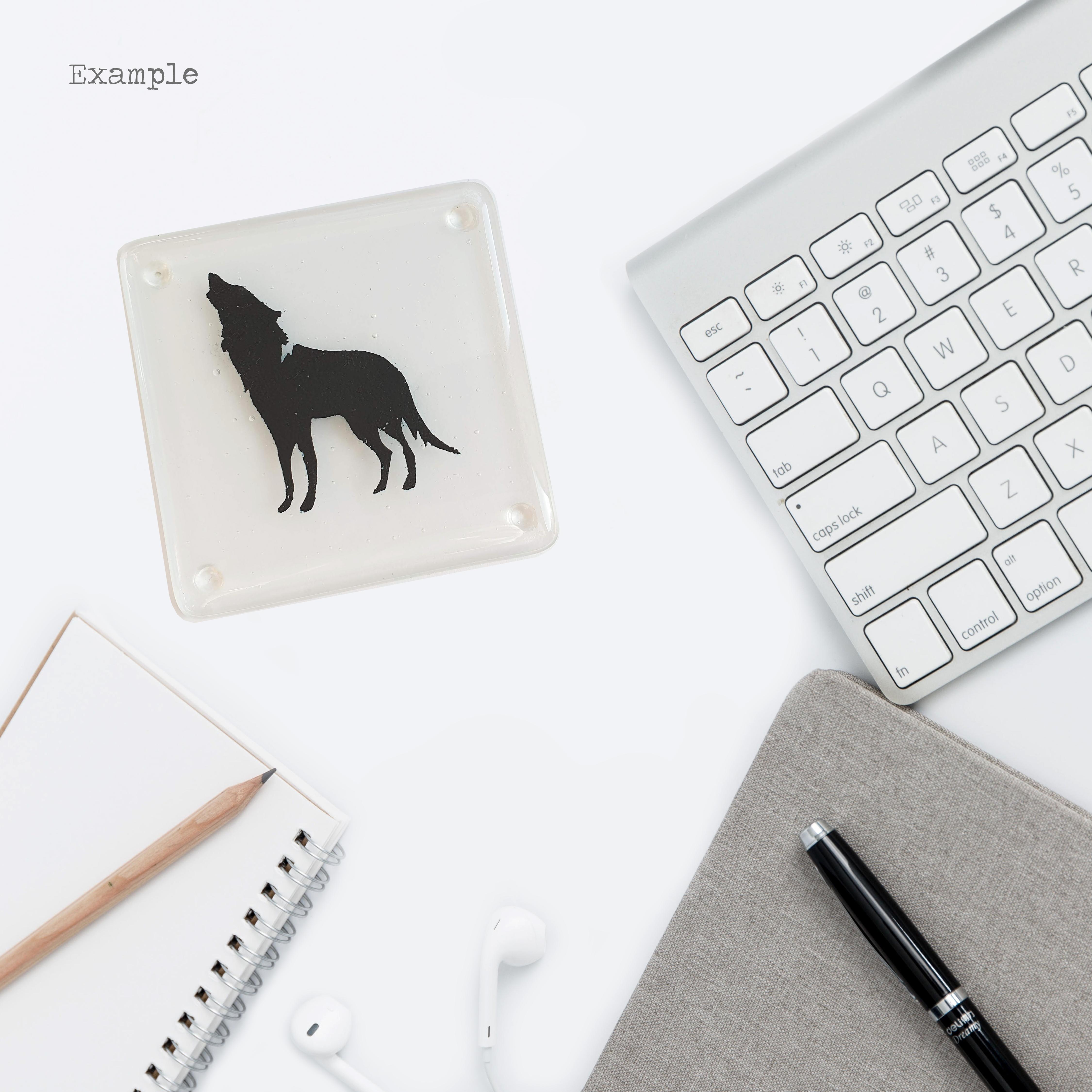 wolf-coaster-situ