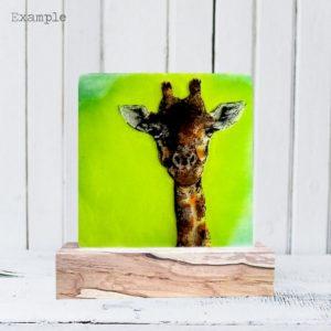 Giraffe<br/>Wooden Base