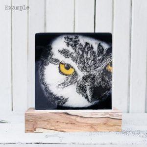Owl<br/>Wooden Base