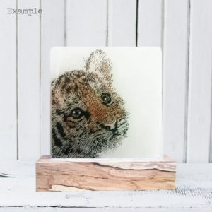 Tiger Cub<br/>Wooden Base