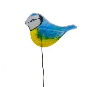Blue-tit<br/>Birdie