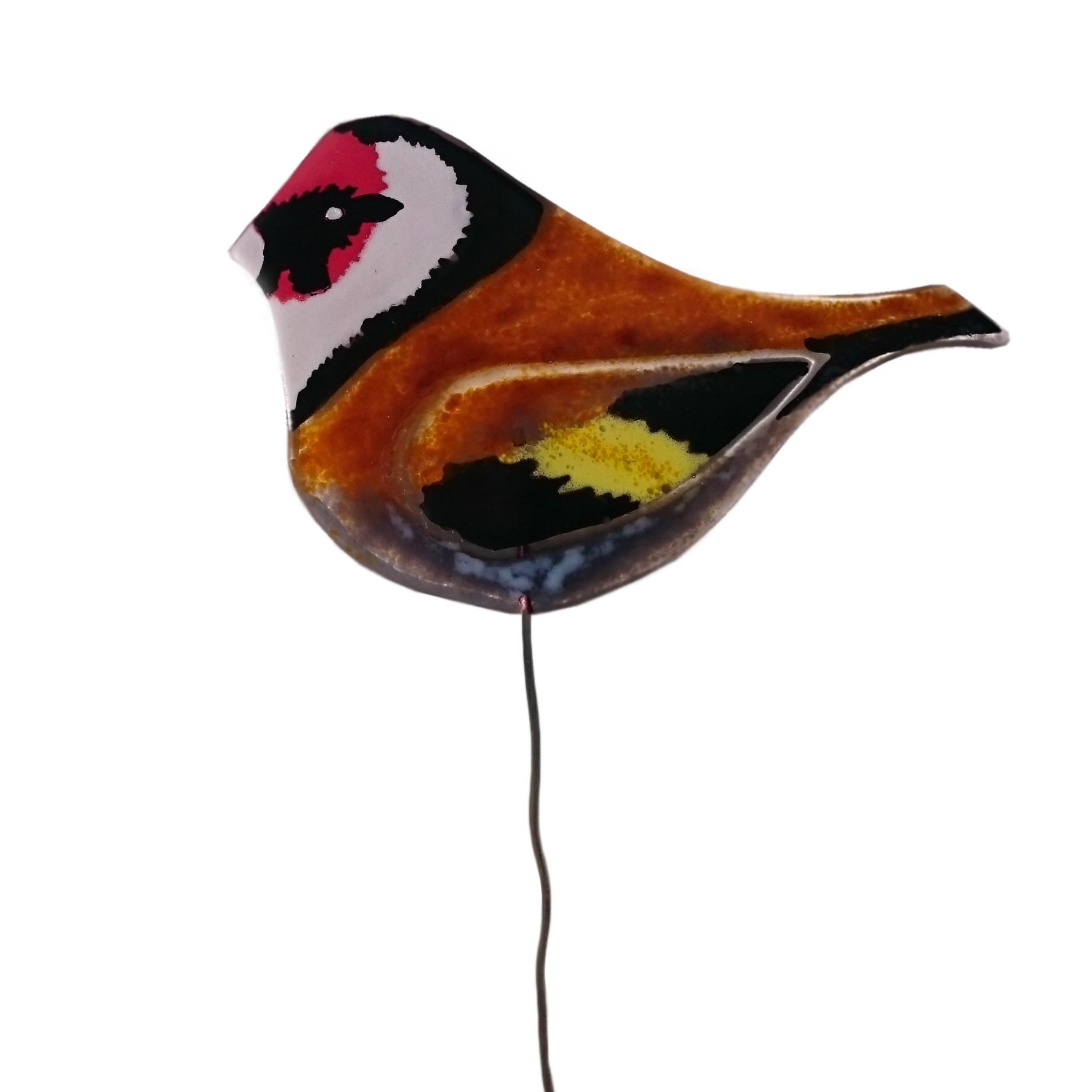 goldfinch-birdie